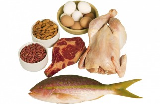 Why do you need to get proteins in your daily meal